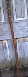Shepherd's Crook 72 inches tall made from Olive wood