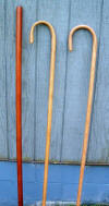 66 inch African Mahogany  walking staff,62 inch Oak Shepherd's Crook,60 inch Oak Shepherd's Big  Crook all finished in hand rubbed Tung oil Finished Sept_22_2008